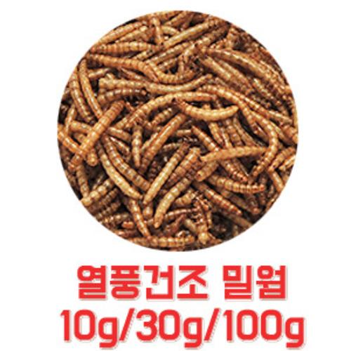 열풍 건조 밀웜 소분 10g/30g/100g