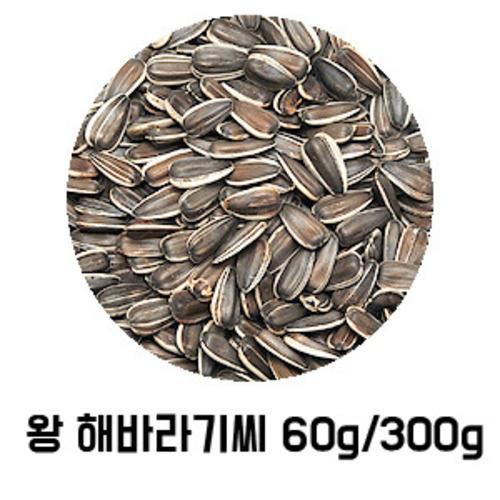 왕 해바라기씨 60g/300g